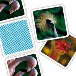 Bersaglio Elettronico per Freccette VEGA incluse 6 Freccette